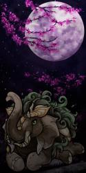 User Avatar: 567615